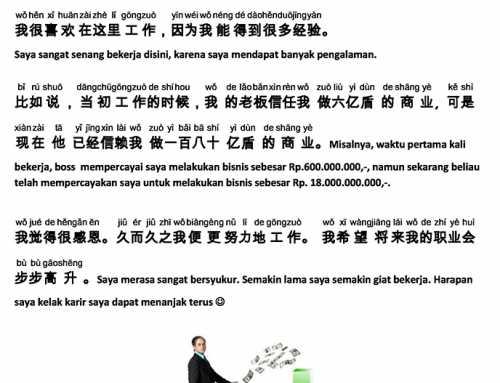 Karangan dalam Mandarin Murid BMC