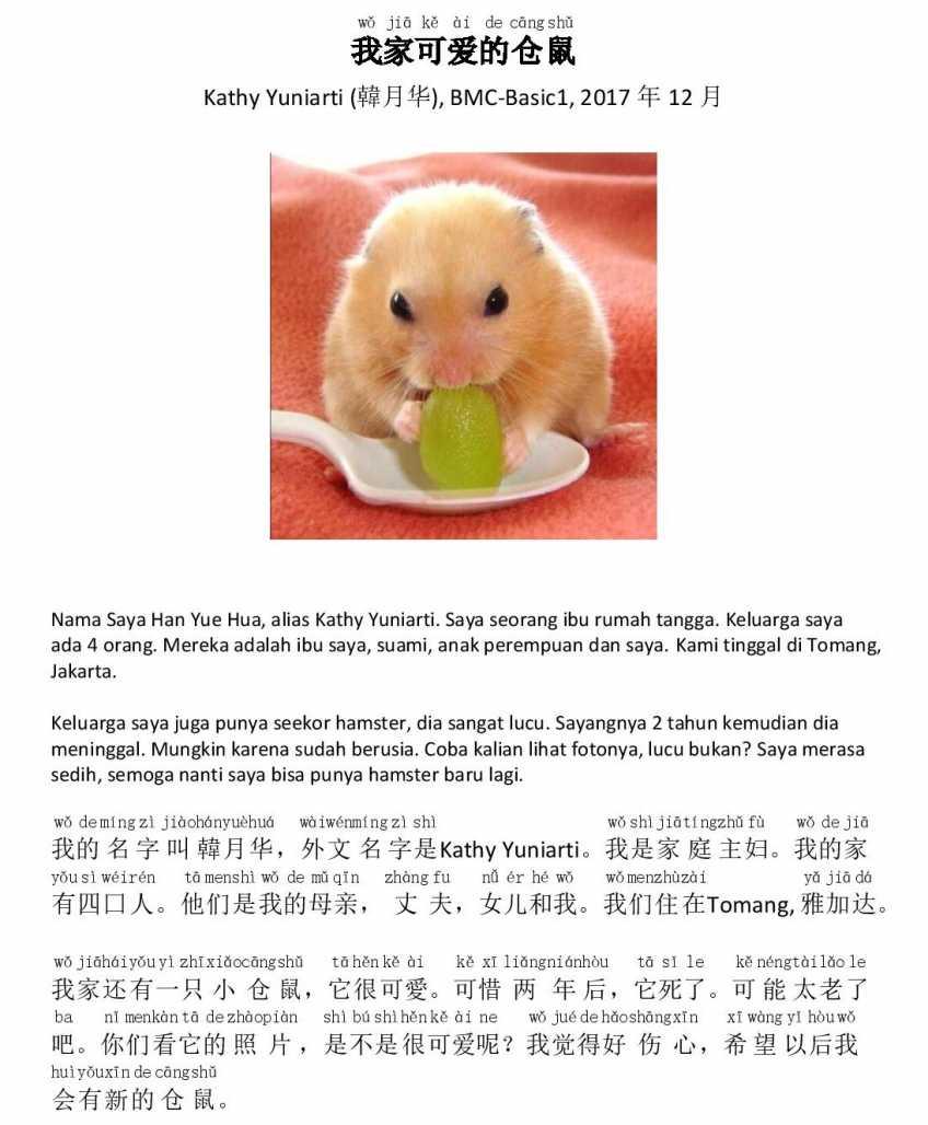 Hamster yang lucu dalam tulisan Mandarin